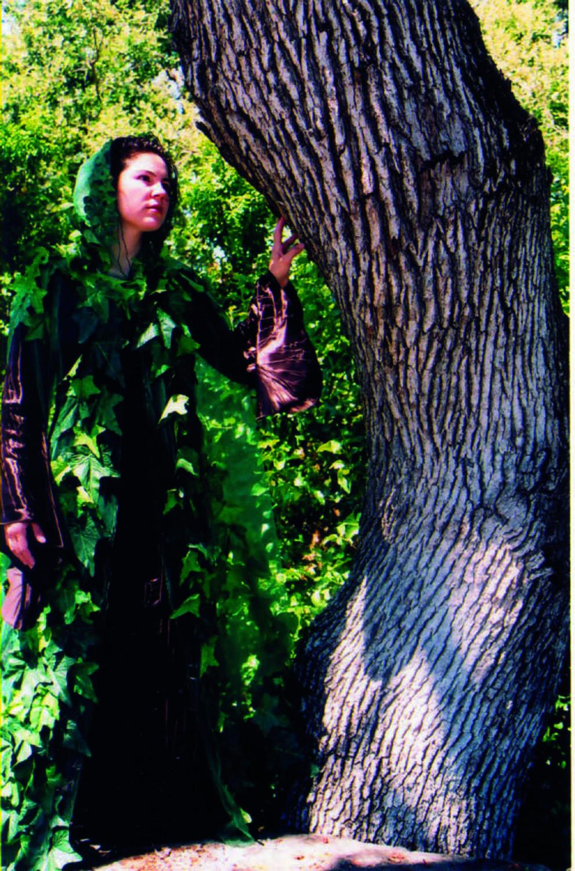 Munroe-Bark Dress and Ivy Cloak